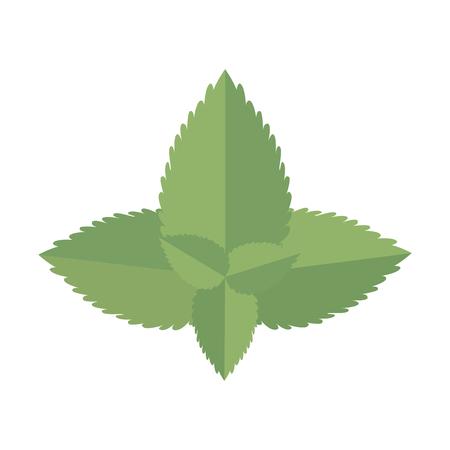 kitchen leafs ingredients healthy food vector illustration design Çizim