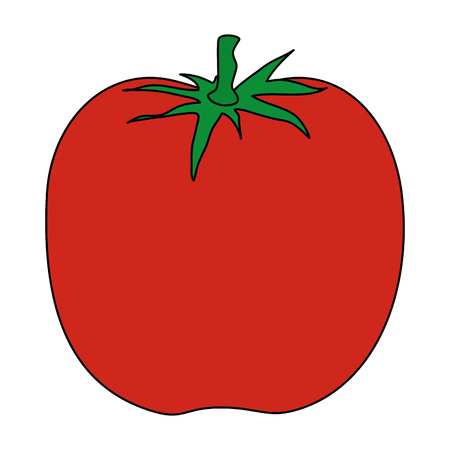 tomato fresh isolated icon vector illustration design