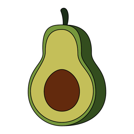 fresh avocados vegetarian food vector illustration design Ilustrace