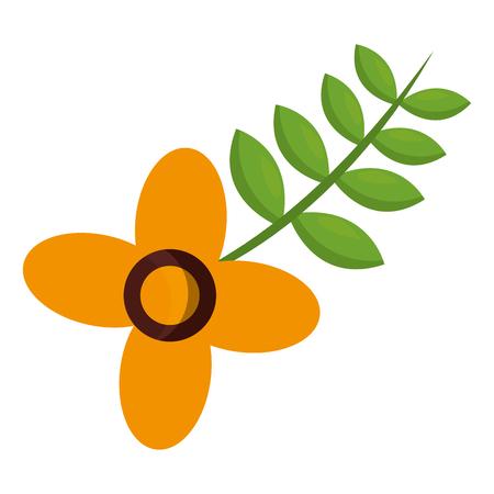 flower natural leaves decoration image vector illustration