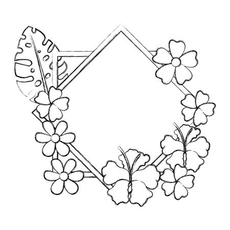 flowers and leafs garden frame vector illustration design