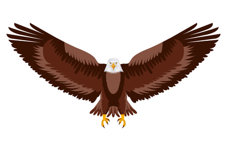 american eagle open wings bird vector illustration