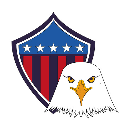 american bald eagle shield vector illustration design Ilustração