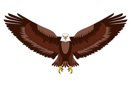 american bald eagle emblem vector illustration design Illustration