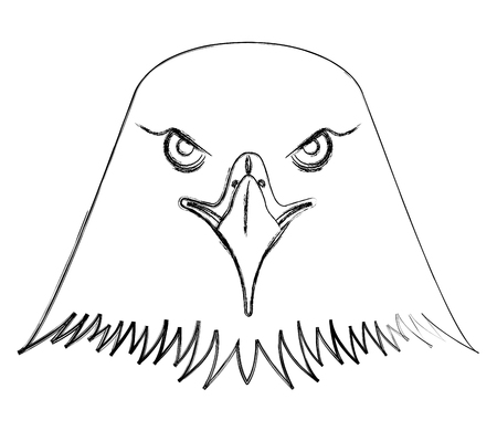american bald eagle head vector illustration design Stock Vector - 102917089