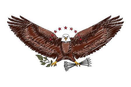 american eagle spread wings with stars arrows and branch vector illustration drawing Illustration