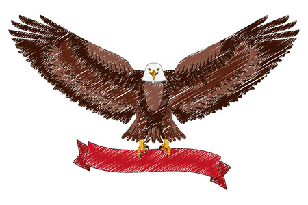 american eagle spread wings with ribbon in the talons vector illustration drawing Illustration