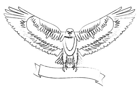 american eagle spread wings with ribbon in the talons vector illustration sketch Illustration