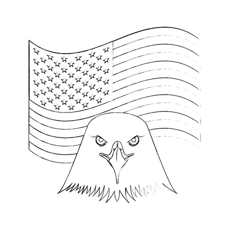 american head eagle flag national emblem vector illustration sketch