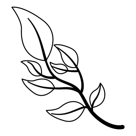 branch leafs plant decoration vector illustration design Illustration