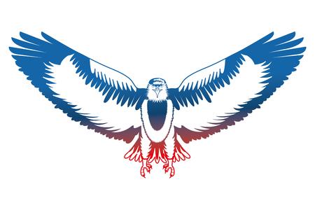 american eagle open wings bird vector illustration