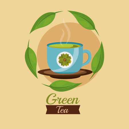 green tea cup herbal leaves decoration vector illustration