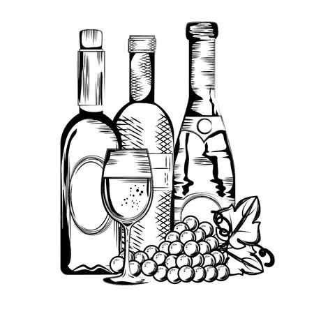 set red wine bottles vector illustration design