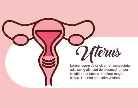 pregnancy fertilization female reproductive uterus vector illustration