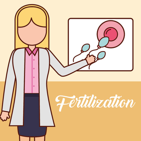 pregnancy fertilization doctor pointed board ovum with spermatozoon fetal monitoring vector illustration Çizim