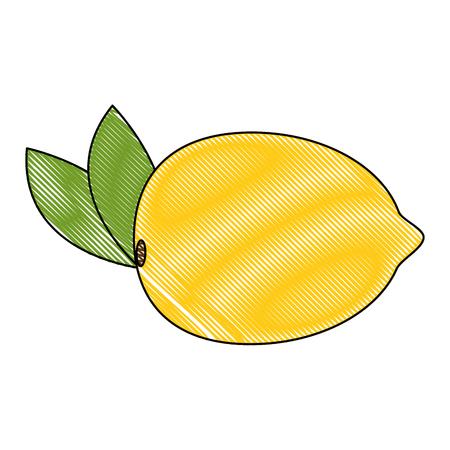 guava fresh fruit healthy vector illustration design Illustration