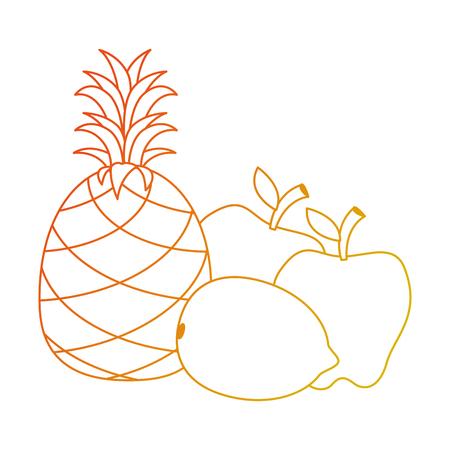set fresh and healthy fruits vector illustration design