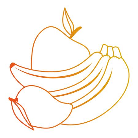 fresh fruits set menu vector illustration design