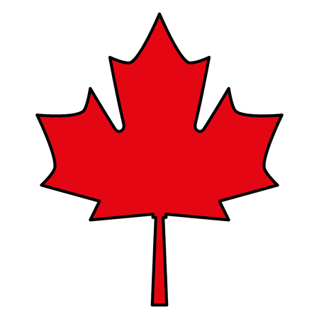 red maple leaf canadian symbol vector illustration Vettoriali
