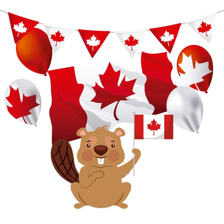 canada day cute beaver holding flag wave leave maple vector illustration