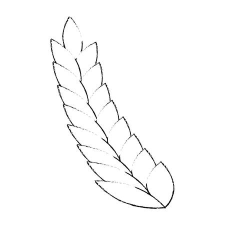 wheat leafs isolated icon vector illustration design Çizim