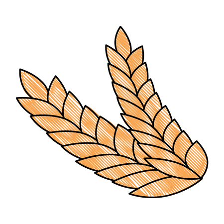 wheat leafs isolated icon vector illustration design Stockfoto - 103252826