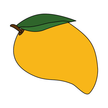 mango fresh fruit healthy vector illustration design Ilustração