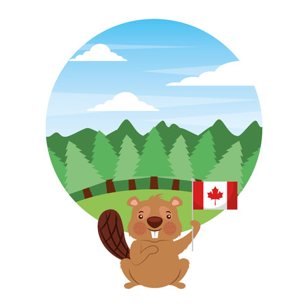 cute beaver holding flag of canada in forest vector illustration