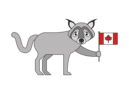 wolf holding canadian flag character vector illustration