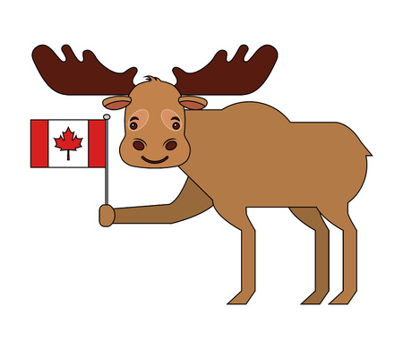cute moose holding canadian flag vector illustration