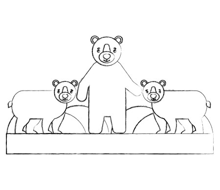 bears grizzly isolated icon vector illustration design