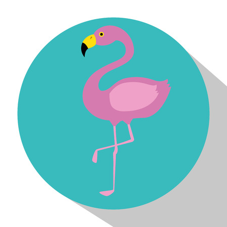 exotic flamingo bird icon vector illustration design