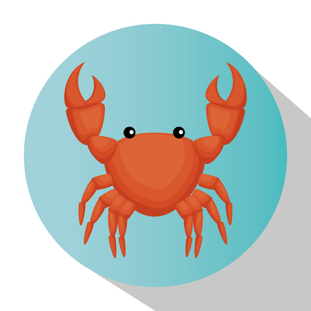 crab animal isolated icon vector illustration design  イラスト・ベクター素材