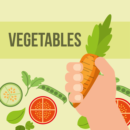 hand holding carrot tomatoes cucumber vegetables vector illustration