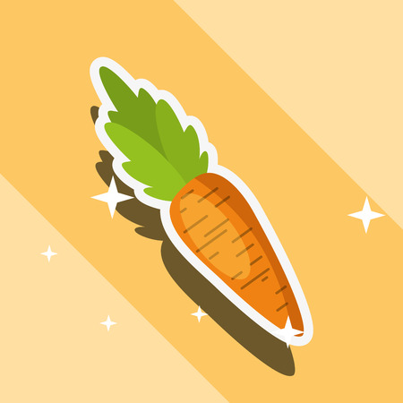 fresh dieting vegetable carrot food vector illustration