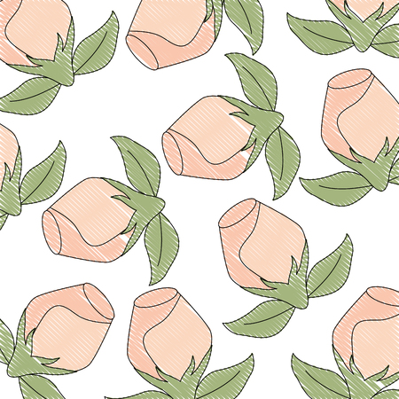 decorative floral leaves flower roses background vector illustration drawing Ilustracja