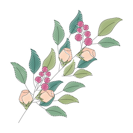 decorative branch flowers berries leaves decoration vector illustration drawing Illustration