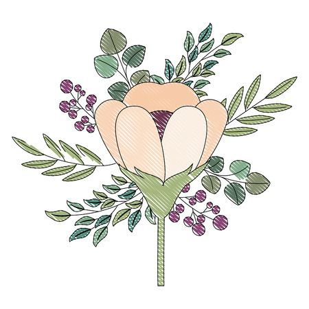 beautiful arrangement flower berries leaves floral vector illustration drawing