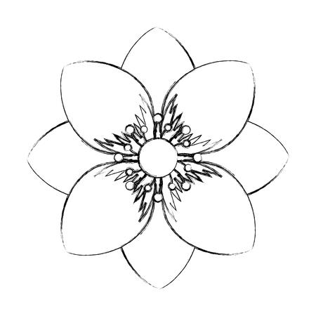 delicate decorative natural ornate flower vector illustration sketch