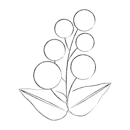 branch leaves berries fruit foliage vector illustration sketch 向量圖像