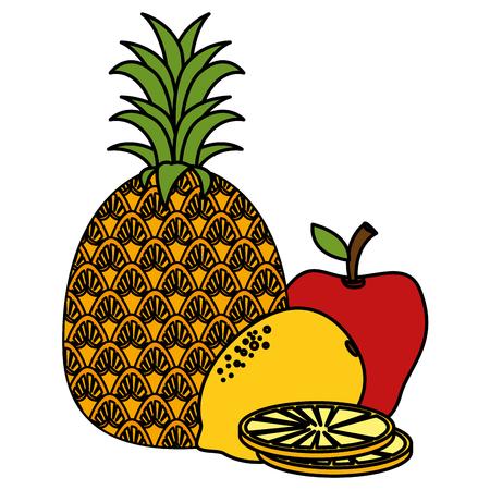 fresh and healthy fruits vector illustration design Banco de Imagens - 104028451