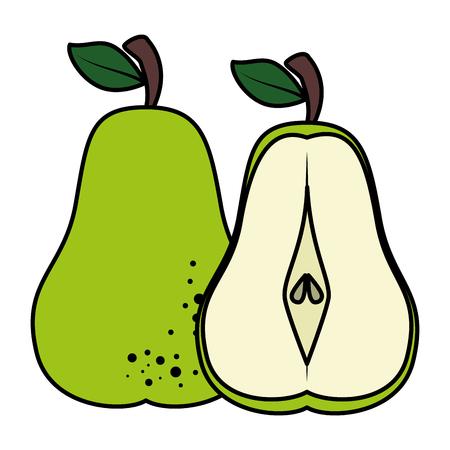 pear fresh fruit healthy vector illustration design