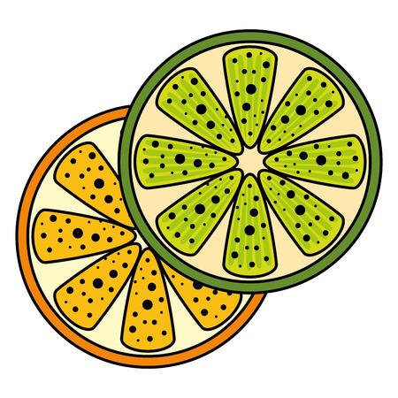 orange half fresh fruit healthy vector illustration design