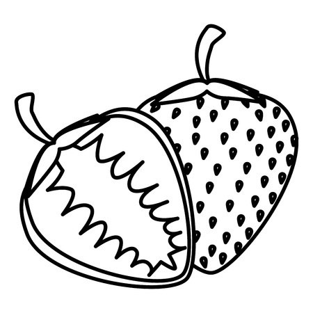 strawberry fresh fruit healthy vector illustration design