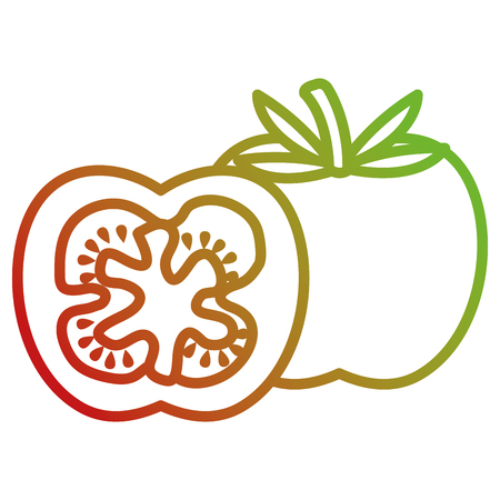 fresh tomato slide healthy food vector illustration design
