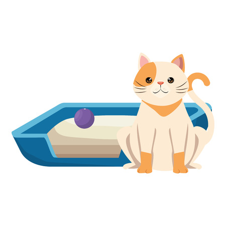 cute cat pet with bed and ball character vector illustration design