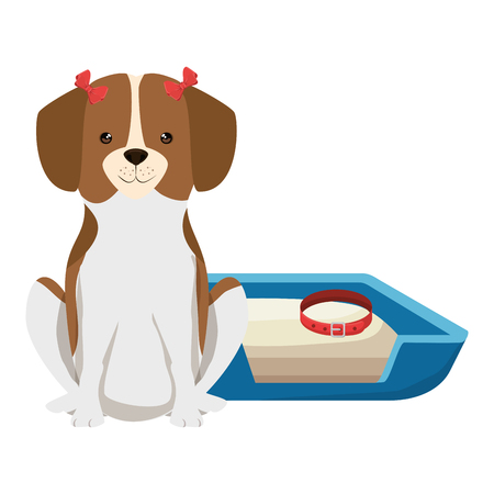 cute dog pet with bed character vector illustration design