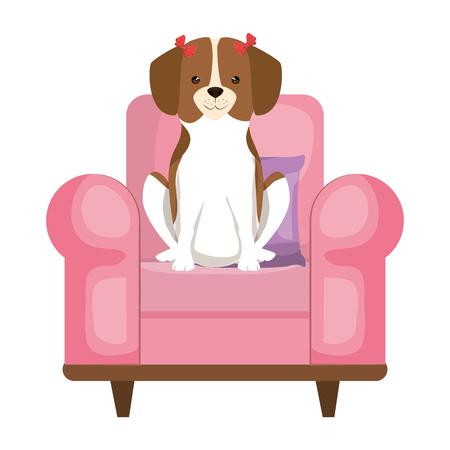 Animal de compagnie chien mignon dans la conception d'illustration vectorielle de caractère canapé