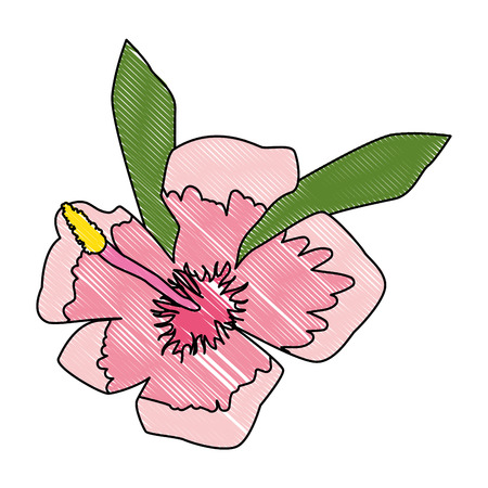summer hibiscus flower exotic vector illustration design