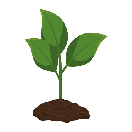 plant and ground ecology vector illustration design